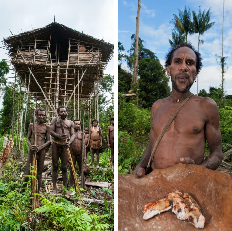The Korowai Tribe – Cannibals of Papua New Guinea